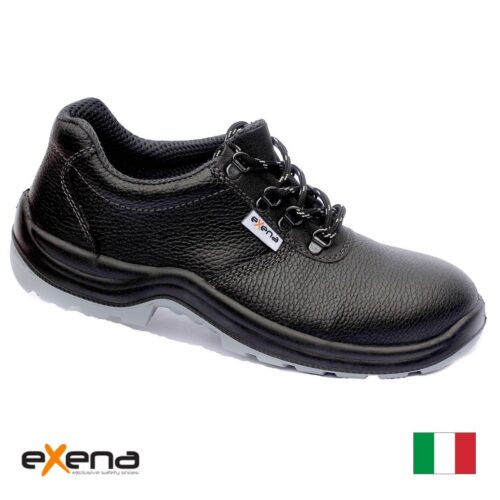 EXENA TICINO S3 SRC